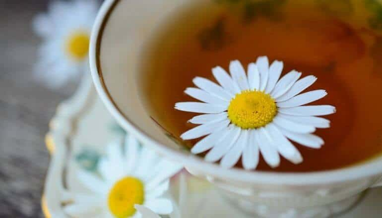 chamomile tea in a cup