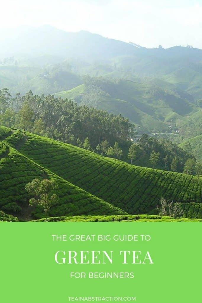 types of green tea guide pinterest image