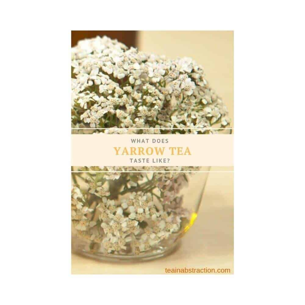 yarrow tea in a glass cup