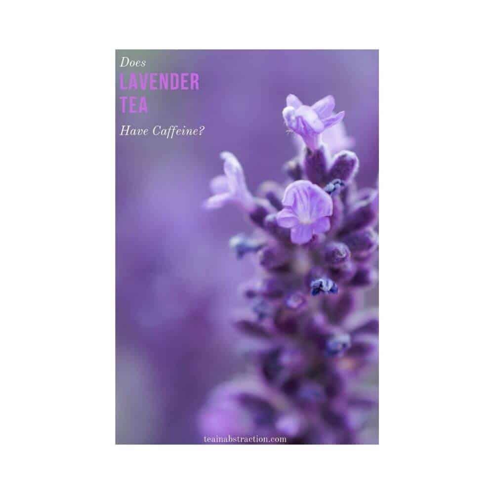 caffeine and lavender tea featured image