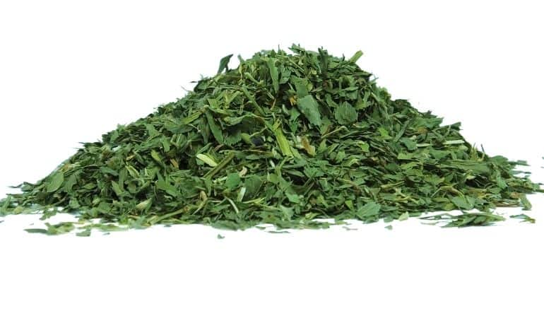pile of alfalfa leaf tea
