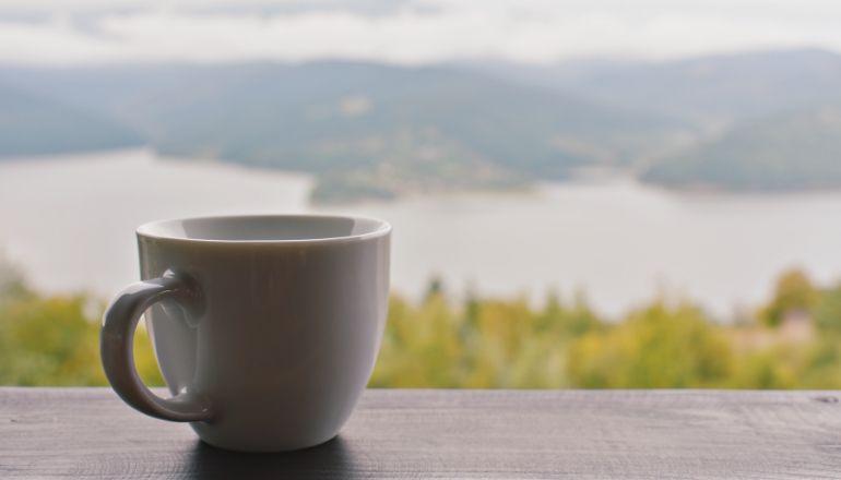 cup of tea overlooking nature
