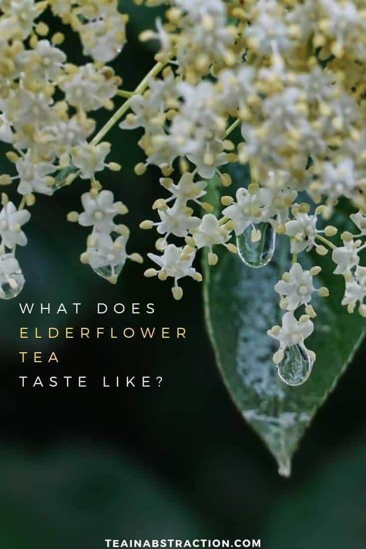 what does elderflower tea taste like pinterest image
