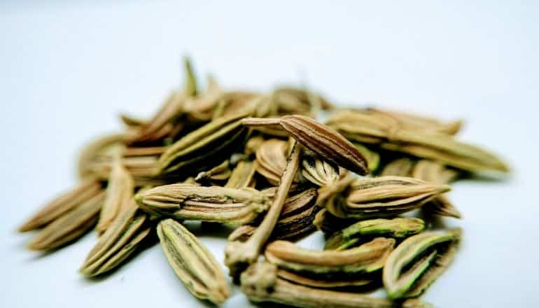 anise and fennel seeds on table
