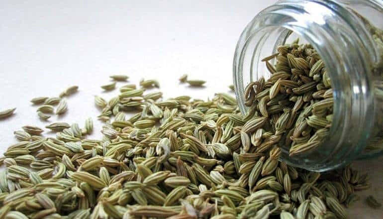 fennel seed spilling out of a jar