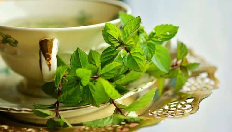 cup of peppermint tea with fresh peppermint next to it
