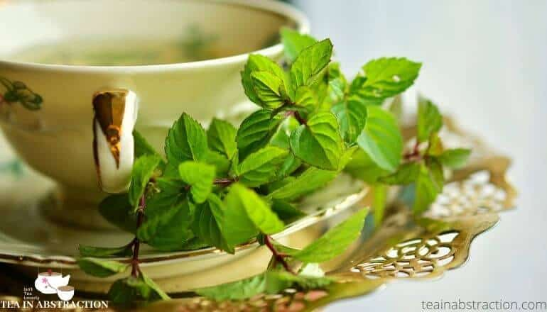 what does peppermint tea taste like featured image