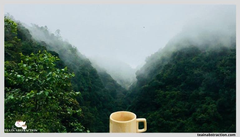 cup of tea overlooking green valley