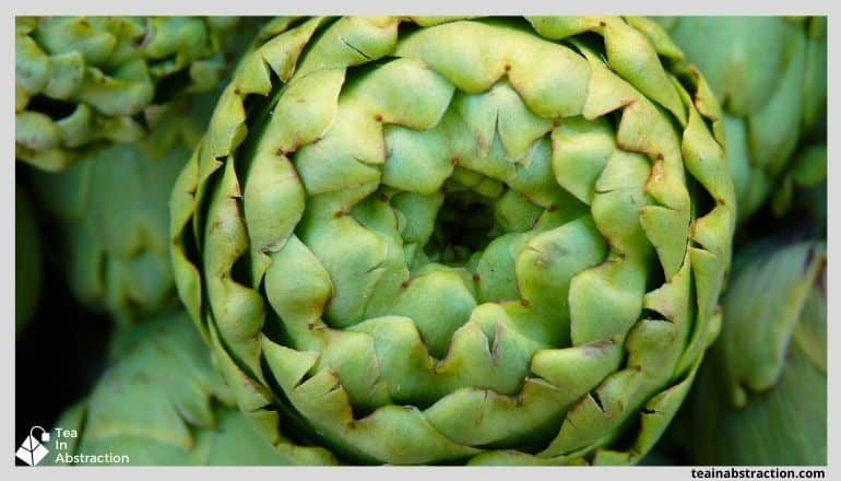 close up of an artichoke