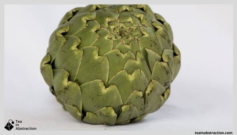 large green artichoke head sitting on a white table with a white background