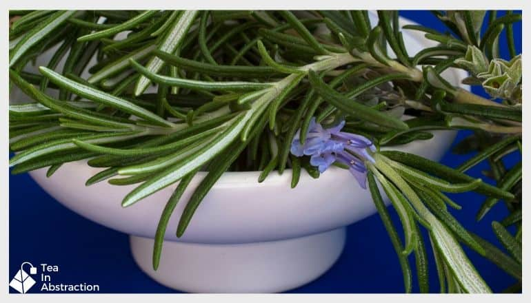 fresh rosemary in a bowl