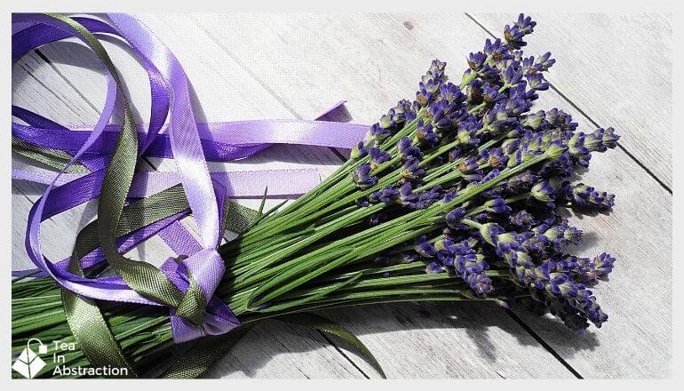 bundle of fresh lavender flowers