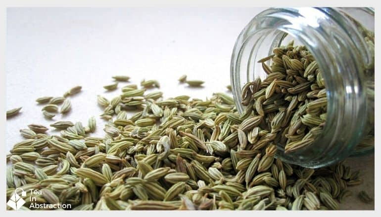 spilled jar of fennel seed on a white table top
