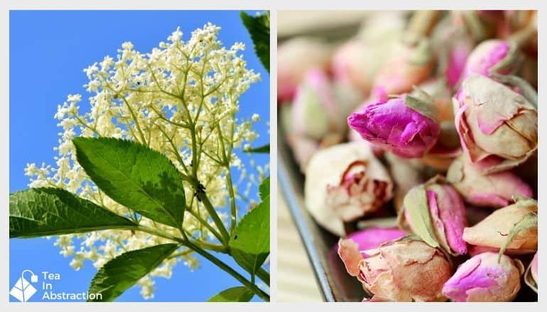 image of dried rose buds and fresh elderflowers