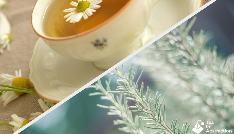cup of chamomile tea with fresh rosemary in an image below it