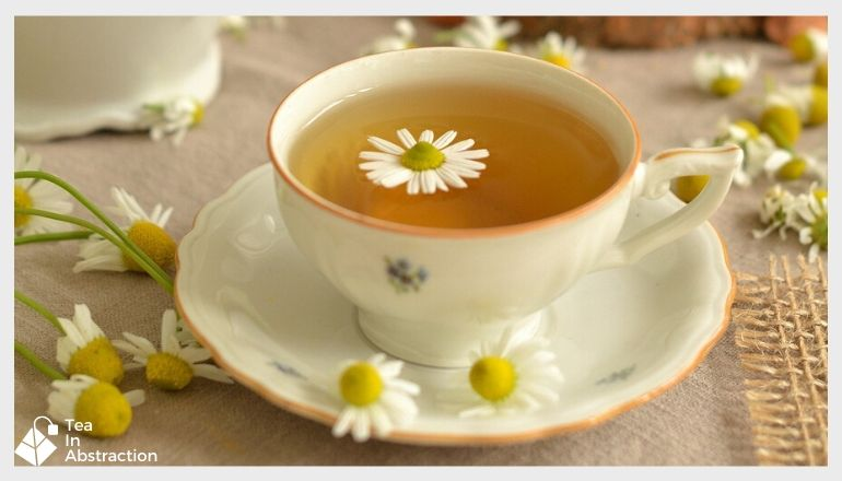 cup of chamomile tea with a white and yellow chamomile flower floating in it