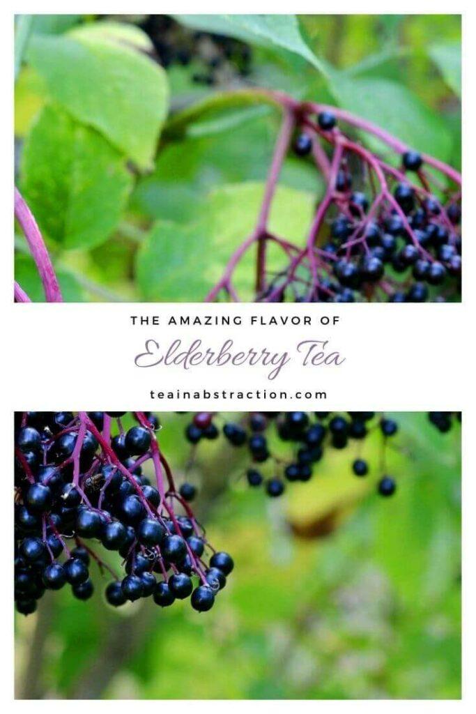 elderberry tea pinterest image
